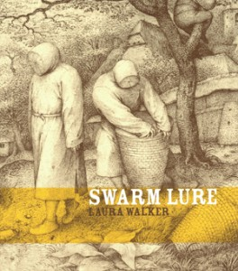 swarm lure cover_small